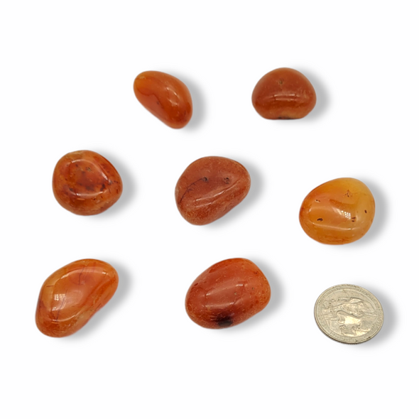 Tumbled Stone - Carnelian