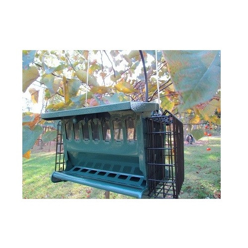 Mini Seeds N More Hopper Feeder by Heritage Farms with 2 suet cages