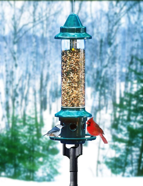 Brome 1024 Squirrel Buster Plus Bird Feeder and Pole Adapter Kit