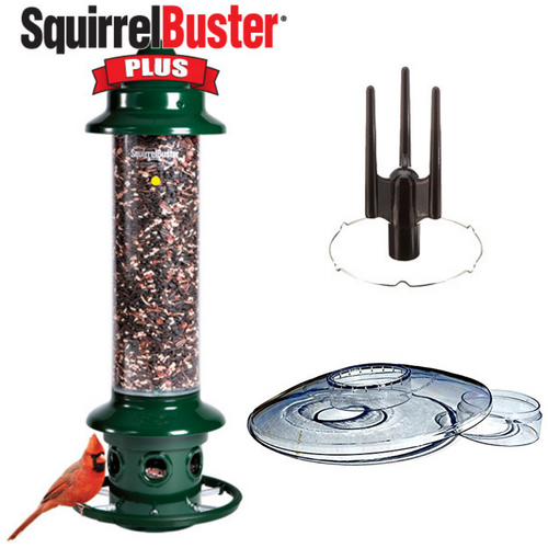 Brome Squirrel Buster Plus Bird Feeder Kit with Weather Guard and Pole Adapter