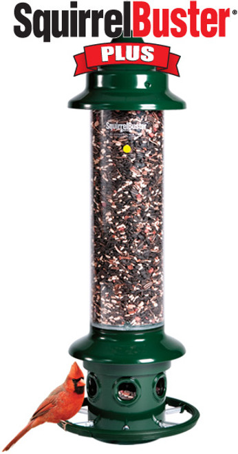 Brome Squirrel Buster Plus Bird Feeder w/ Cardinal Perch Ring 1024 - Squirrel Proof