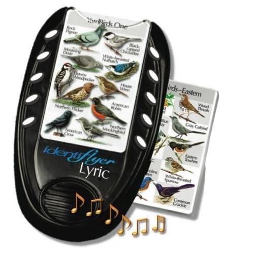 Identiflyer Lyric, GCIF05, Learn Bird Songs Quickly!