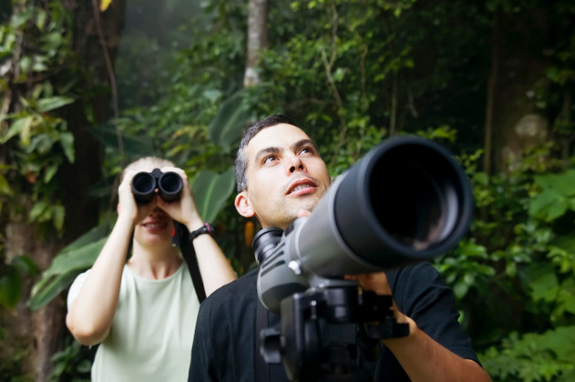 Do What You Love: How to Start a Birdwatching Club
