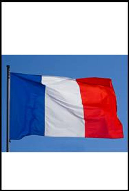 77544 France country Flag
