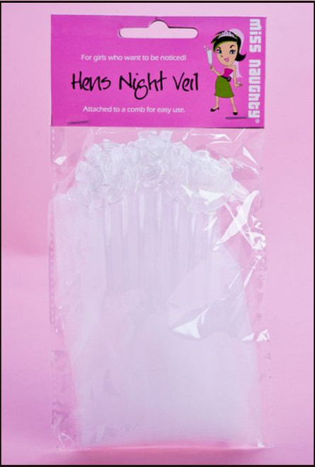 Hens Party Veil Small