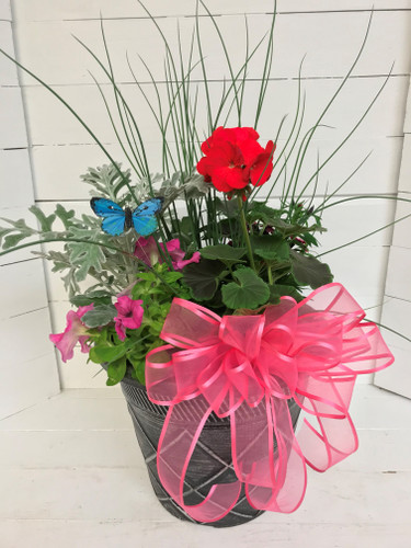 """10"""" Decorative Patio Pot with Mixed Annuals & Bow"""