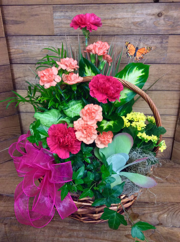 Butterfly Mixed Planter Basket with Vivid Fresh Flowers