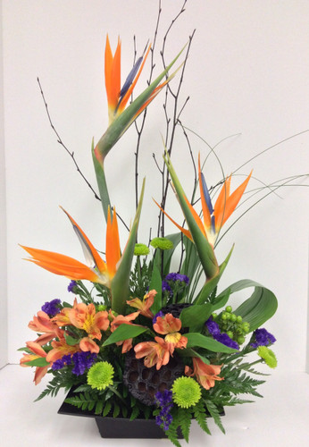 """Tropical nights"" Arrangement"