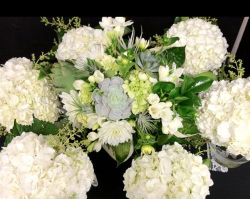 Succulent Garden Wedding Package