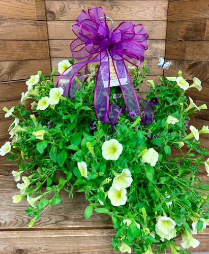 """12"""" Blooming Combo Hanging Basket With Bow"""