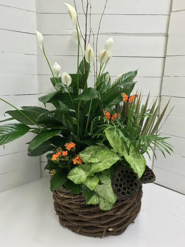 Large Lotus and Butterfly Planter