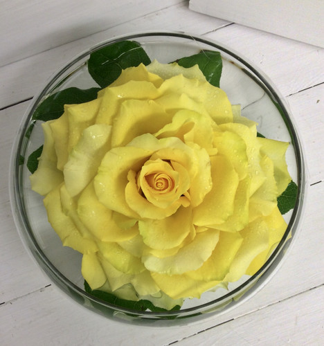 Yellow Composite Rose Floating in Bowl