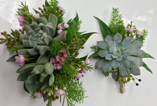 Succulent Wrist Corsage and Boutonniere Combo