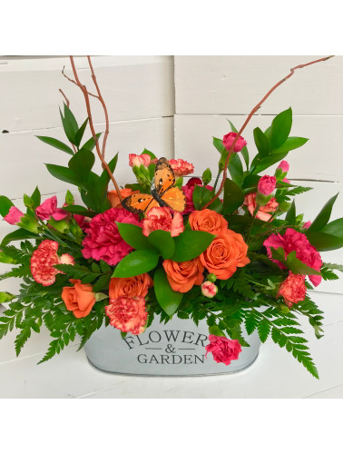 Vivid Flowers and Garden Butterfly Arrangement