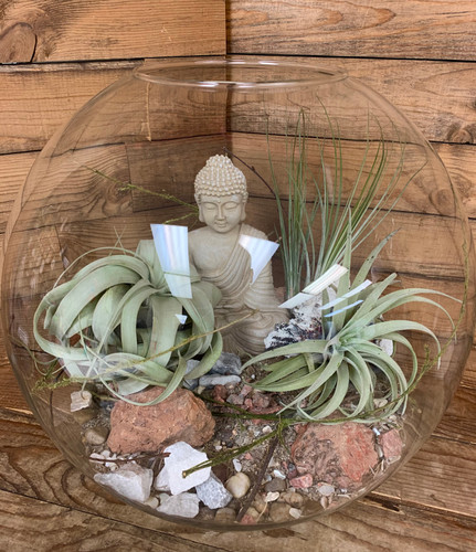 Large Round Desktop Terrarium with Buda