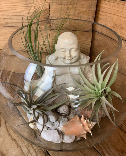 Large Round Desktop Terrarium with Buda and Sea Shells