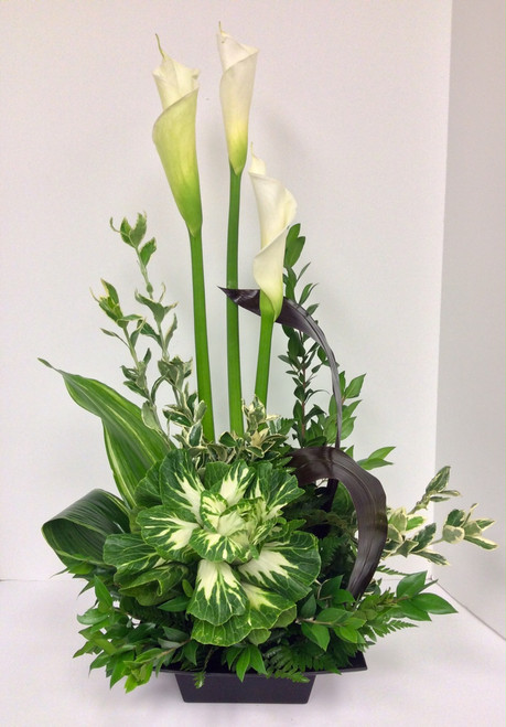 Designer Calla Lily and Kale Contemporary Arrangement
