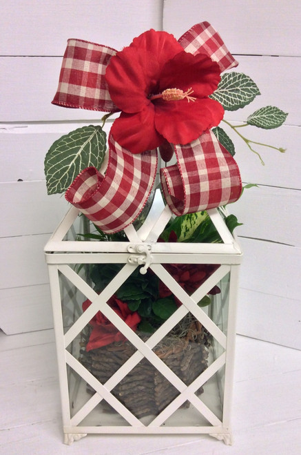 Planter in Medium Sized Metal and Glass Terrarium with Silk Embellishment