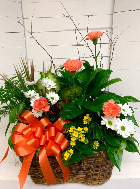 Extra Large Mixed Planter with Fresh Flowers