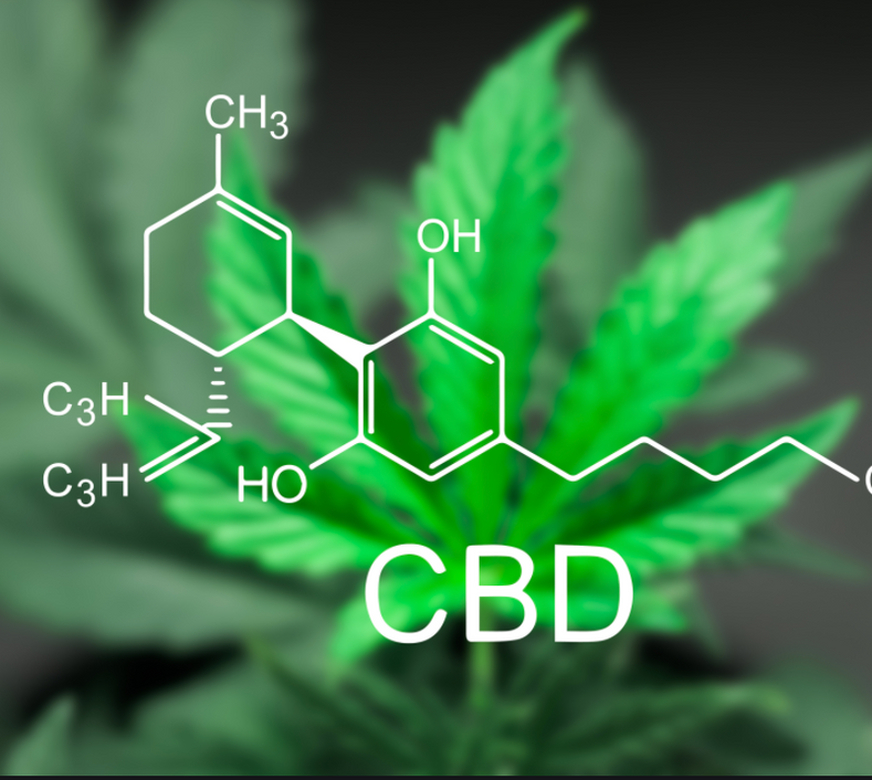 Ways To Add CBD To Your Workout Schedule