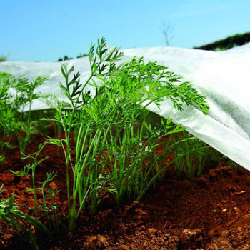 Nonwoven Crop Cover Plants Frost Protection Fabric Insect Netting Various Sizes