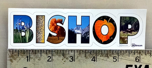 Bishop Pics Sticker