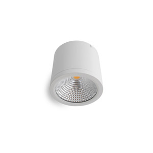 25W LED Downlight Dimmable Surface Mount White
