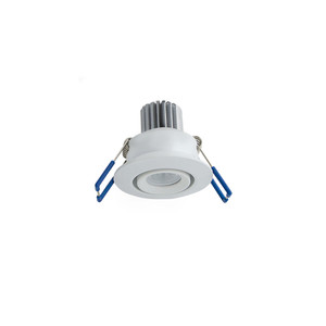 4.5W LED Adjustable Downlight with Driver