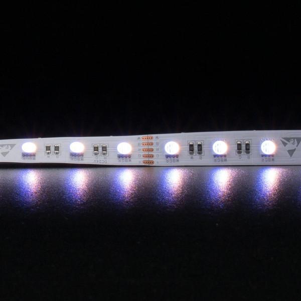 STRIP-60-RGB-WW Flexible 60 LED Strip - 19.2W 24V / RGB + WW