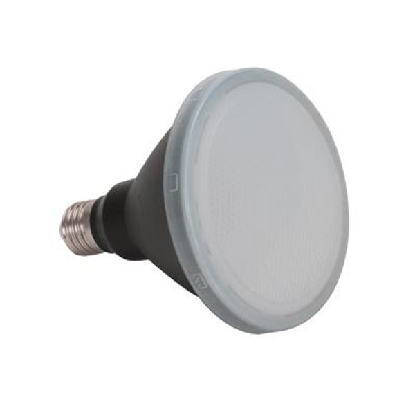 KEY PAR30-12 E27 / Non-Dimmable Frosted Led Globe