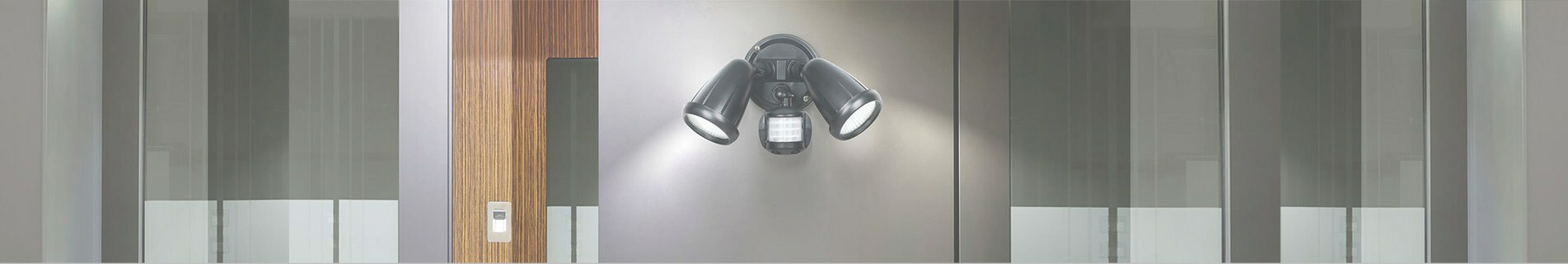 Security and Sensor Lighting