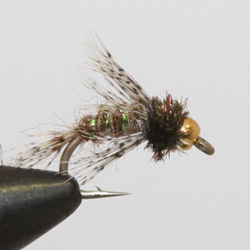 Anderson Bird of Prey Brown