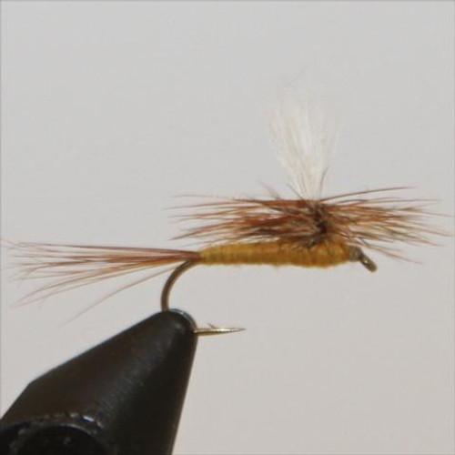 Parachute March Brown