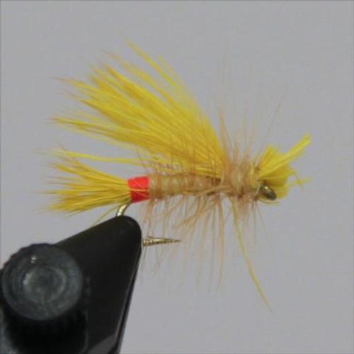 Yellow Sallie