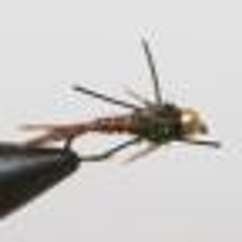 Rubber Leg Bead Head Pheasant Tail