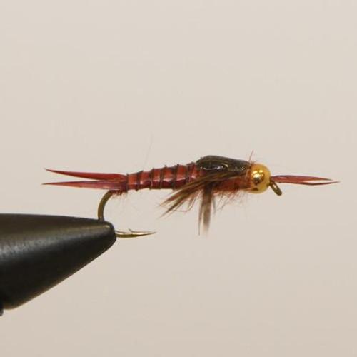 Brown Biot Epoxy Stonefly