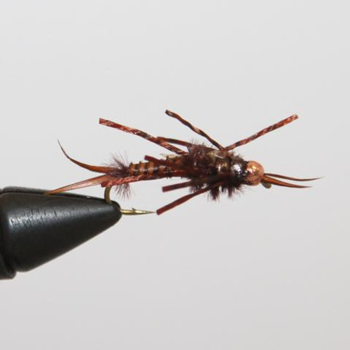 Tungsten Brown Stonefly