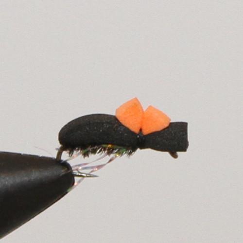 Hi - Vis Beetle