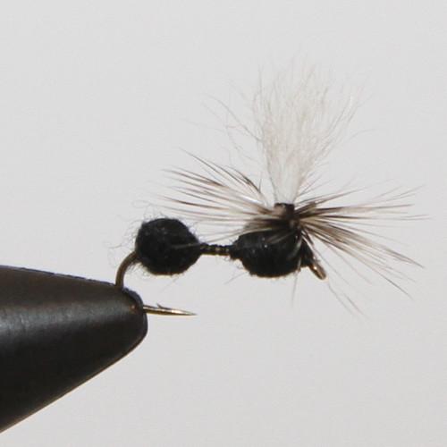 Parachute Black Ant