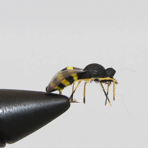 Super realistic foam Wasp from MFC.