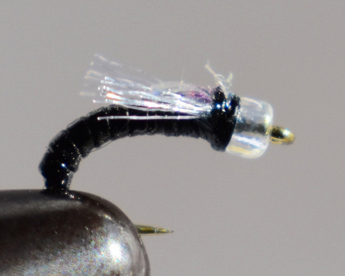 Flash bang Midge Black