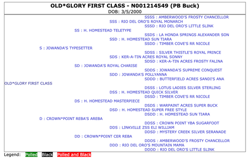 Old* Glory First Class