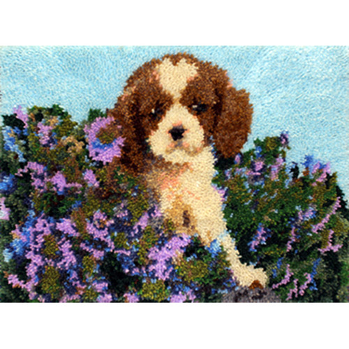 King in the Flower Garden Latch Hook Rug Kit