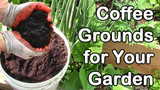 Low Cost Plant Foods We Usually Have On Hand At Tn Nursery
