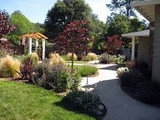 ​Do It Yourself Landscaping, The Affordable Way For You