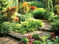 ​Landscaping On A Tight Budget: What You Can Do Now To Save