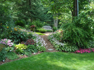 Choosing the Hardiest Plants for Your Landscaping Areas