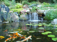 ​Sustainable Retention Ponds