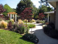 ​Oak Trees Have Many Excellent Uses In Landscaping Areas