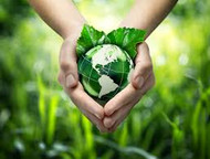 Factors for Building a Sustainable Food Supply